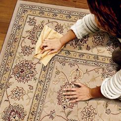 rug-cleaning9f380a0e69c2ddb1.jpg