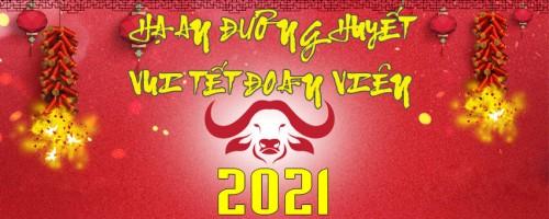 banner-tet-202171bc252b7046e950.jpg