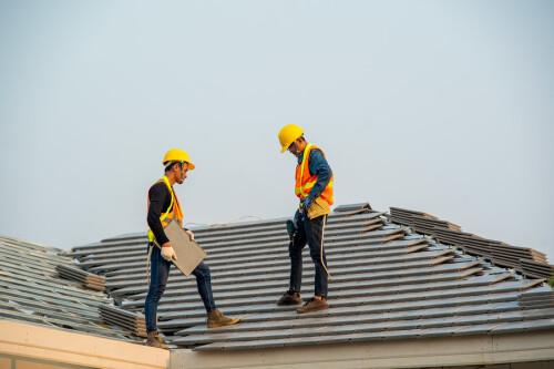 Roof2619b18d21942b76.jpg
