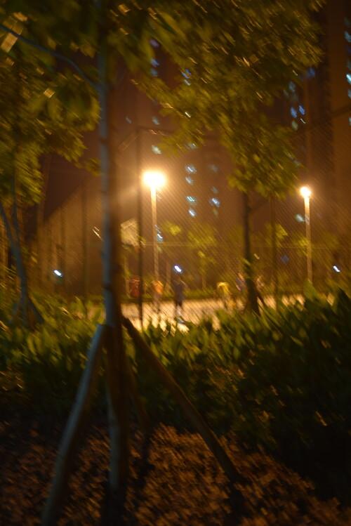 PIC_0046c50fefca95a368b1.jpg