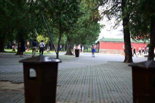 wangxing_156454d8d0da102000.jpg