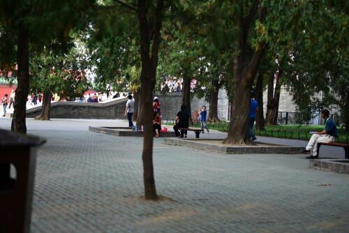 wangxing_1760b7c881144080c9.jpg