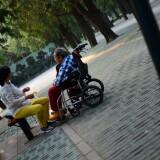 wangxing_193992c87b4fa9bd1a
