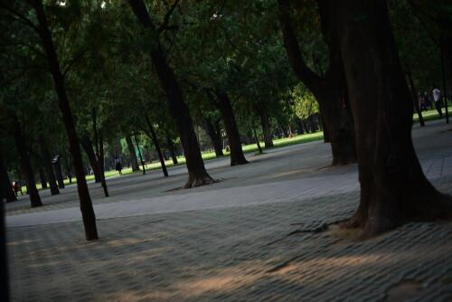 wangxing_213f15af1eb089c4ca.jpg