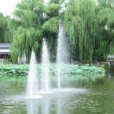 wangxing_50609556731e2d9f7c