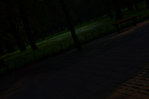 wangxing_764b00fbad3de68bd.jpg